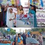 World fisheries day - November 21 2010