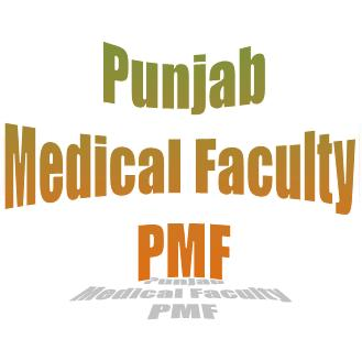 Lahore: Punjab Medical Faculty Employees Await Salary