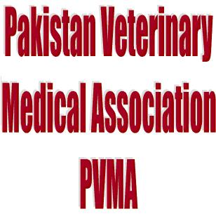 Veterinary Doctors Protest Joblessness in Karachi