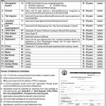 Jobs in NTDC WAPDA 1