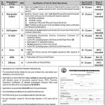 Jobs in NTDC WAPDA 2