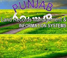 Drivers Jobs in Punjab PMU LRMIS