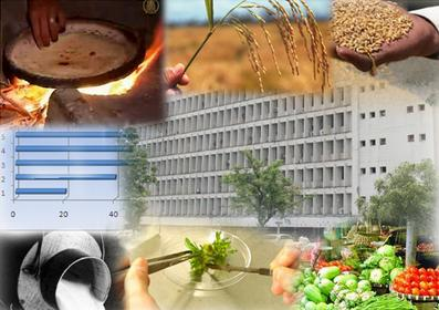 Federal Ministry of Food Security and Research