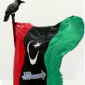 PPP Flag - Pakistan Peoples Party