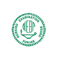 Punjab Nursing Examination Board Announced Result of Session March/April 2014