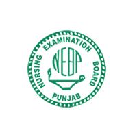 Nursing Examination Board Punjab (NEBP) Logo