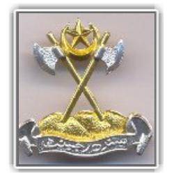 Sindh Regiment (Pak Army) Logo
