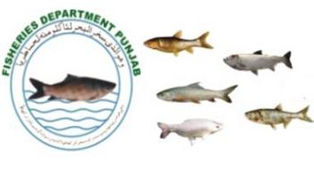 Fisheries Department Punjab Logo