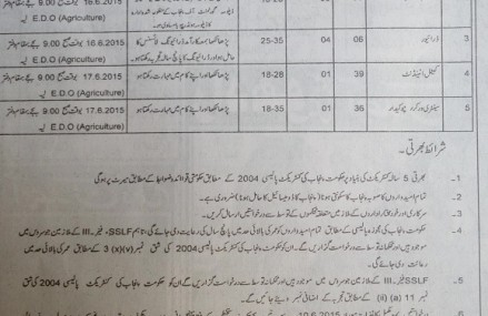 Jobs Recruitment in Livestock Department District Layyah