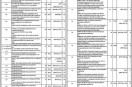 Jobs in City District Govt Lahore Health Department