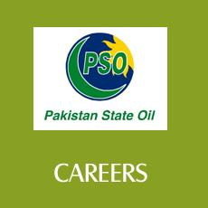 PSO Jobs for IT, Legal and Financial Professionals