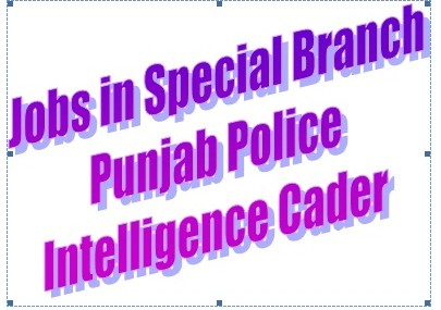 Jobs in Punjab Police Special Branch Intelligence Cadre Through NTS
