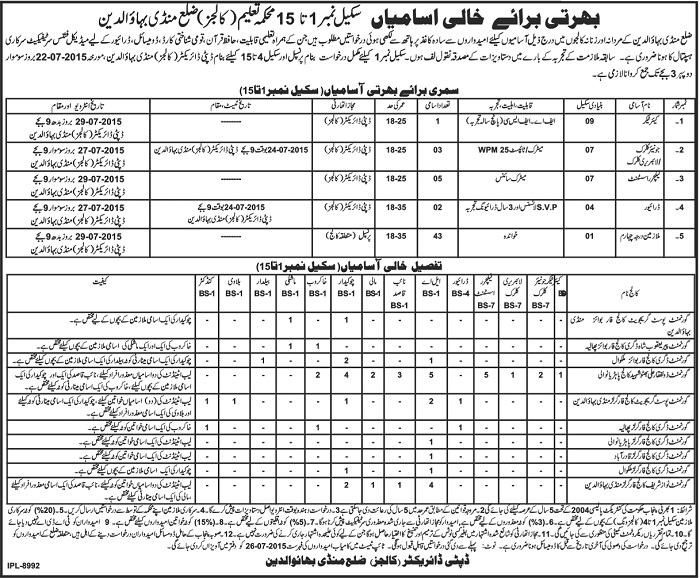 Jobs in Director Colleges Mandi Bahauddin District