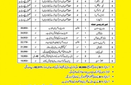 Jobs in Lady Anderson  Higher Secondary Girls School Sialkot