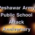 Army Public School (APS) Attack Anniversary 2015