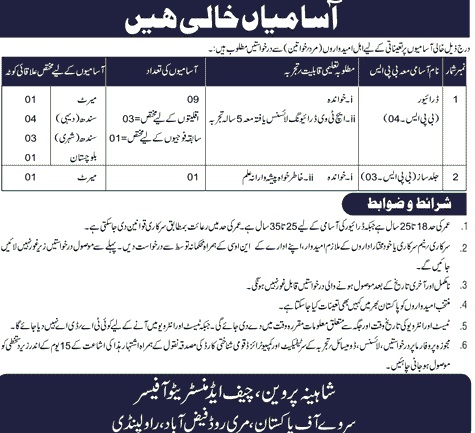 Jobs in Survey of Pakistan driver