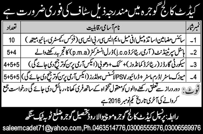 Jobs in Cadet College Gojra Mochiwala Road District Toba Tek Singh