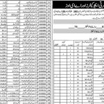 muzaffargarh-district-educators-jobs-detail-3601-educators-and-158-aeos
