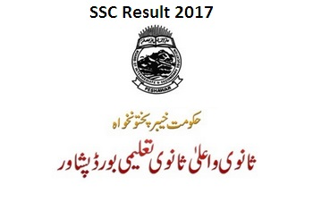 BISE Peshawar Board Result 2017 Matric/SSC/Class 9&10) Online Today