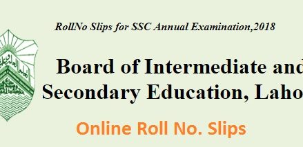 Matric Roll No Slips Online for Exam 2018 on BISE Lahore  Board Website