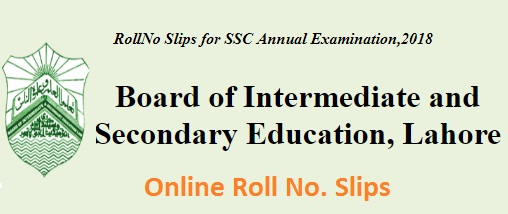 Matric/SSC Online Roll No Slips 2018 Download - BISe Lahore Board, Multan, GRW, FSD, BWP, RWP