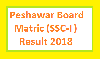 BISE Peshawar Board Matric/SSC-I/Class 9th Result 2018