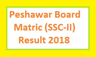 BISE Peshawar Board Matric/SSC-II/Class 10th Result 2018
