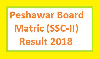 BISE Peshawar Board Matric/SSC-II/Class 10th Result 2018