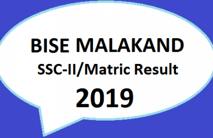 Board Online Result | BISE Malakand  | SSC Part II/Matric Result 2019 | Class 9th, 10th Online