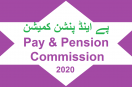 Pay and Pension Commission Gets New Chairperson (Nargis Sethi)